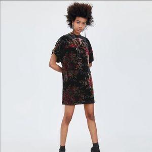 Zara Floral Velvet Mock Neck Shift Dress